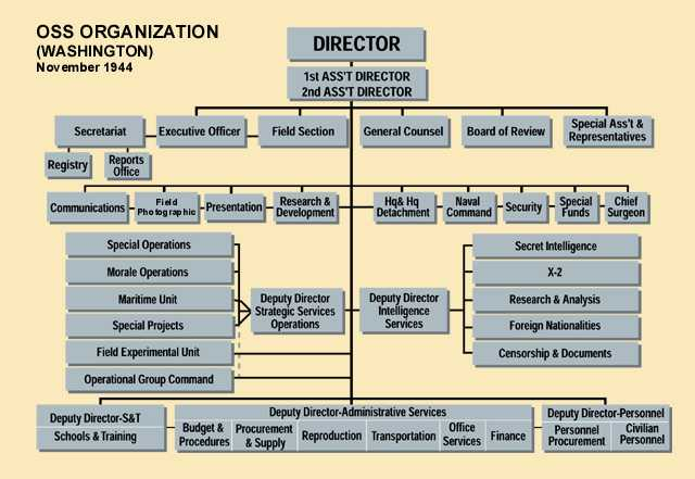 Organization chart of the OSS.