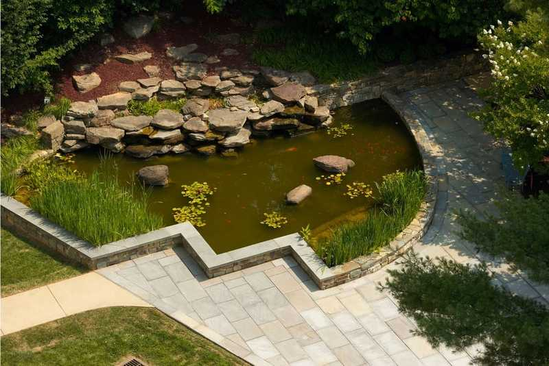 A top down view of the garden's fishpond.